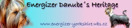 http://www.energizer-yorkshire.wbs.cz/Home.html